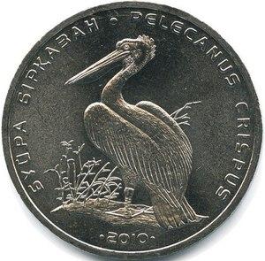 50 тенге Кудрявый пеликан