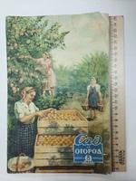 """Журнал """"Сад и огород"""" 1957 г. Выпуск 4 и 8."""