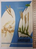"""КоопторгРеклама центросоюза """"Споры ликоподия"""" 1958 г."""