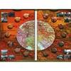 Альбом-планшет с блистерами для 14 монет Освобожденные города-столицы